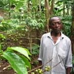 Gibson Lyimo, Marangun osuuskunnan perustajia