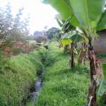 Kastelukanavilla saadaan vettä viljelmille.